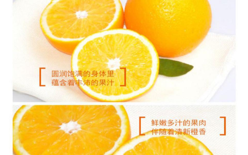 双喜橙_03.jpg