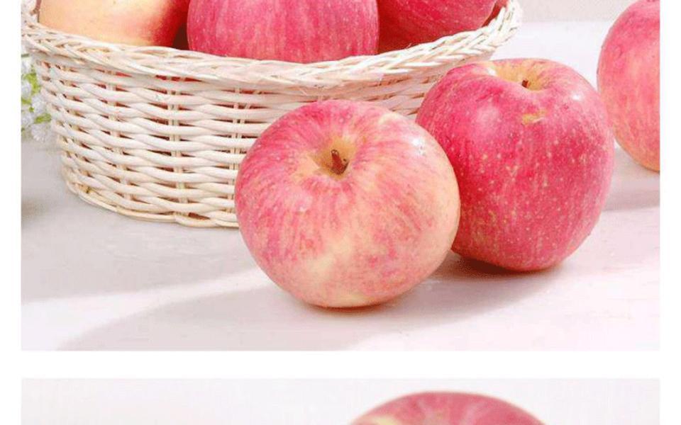 富士苹果1_07.gif