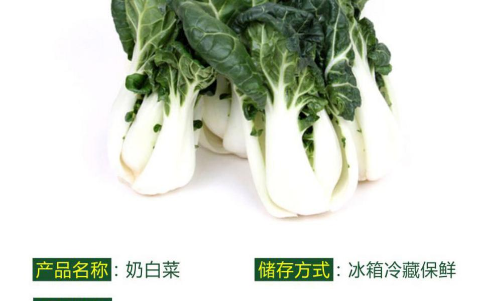 奶白菜_02.jpg