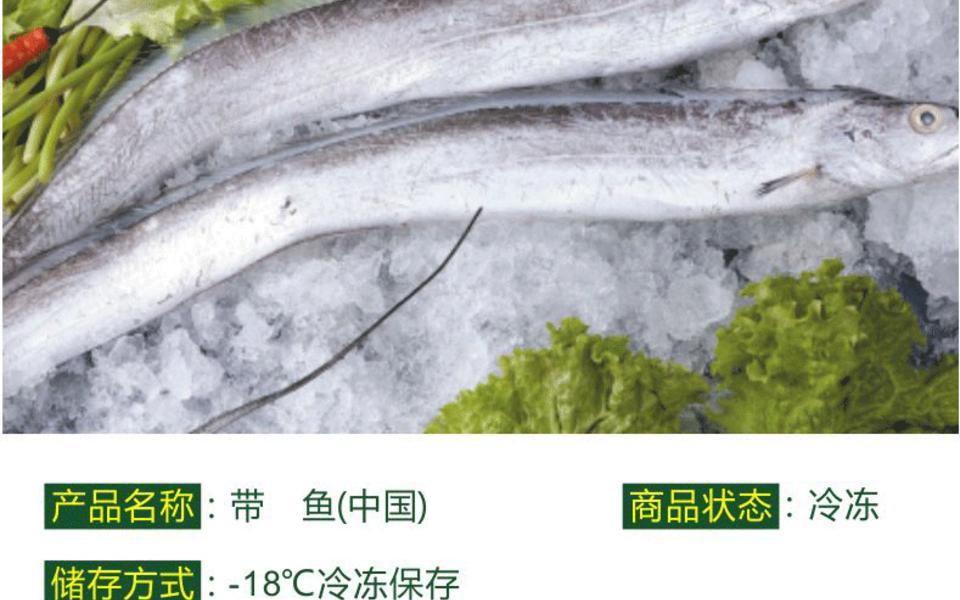 舟山小带鱼2_03.gif