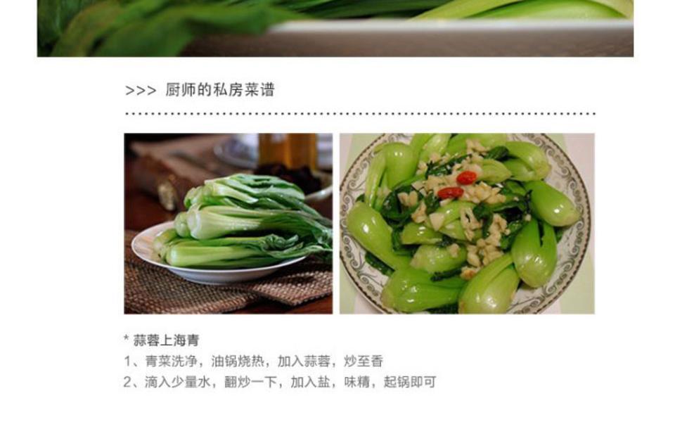 青江菜_05.jpg