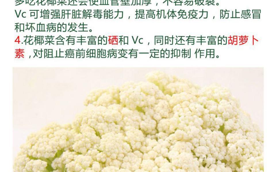 花椰菜_04.jpg