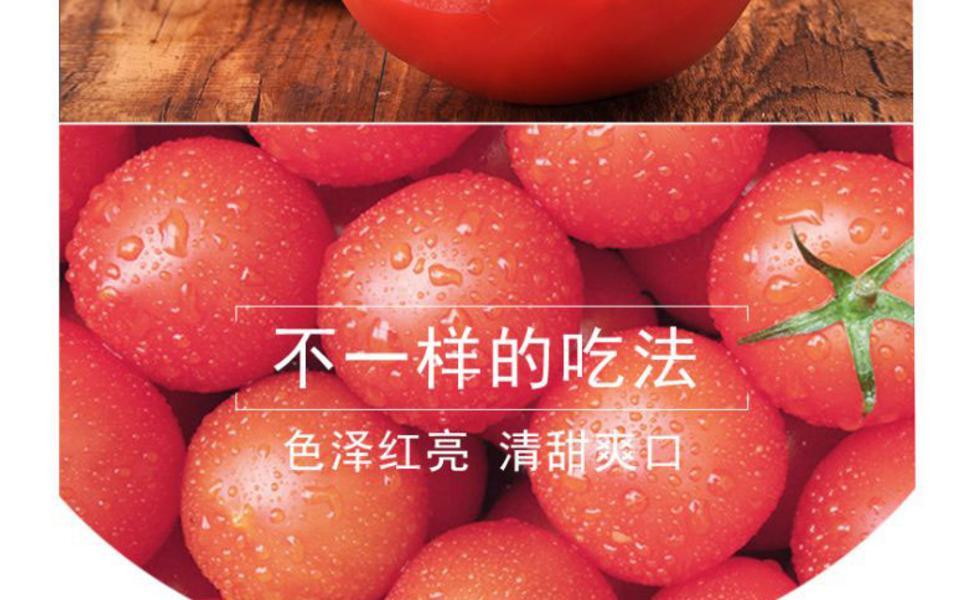 西红柿_06.jpg
