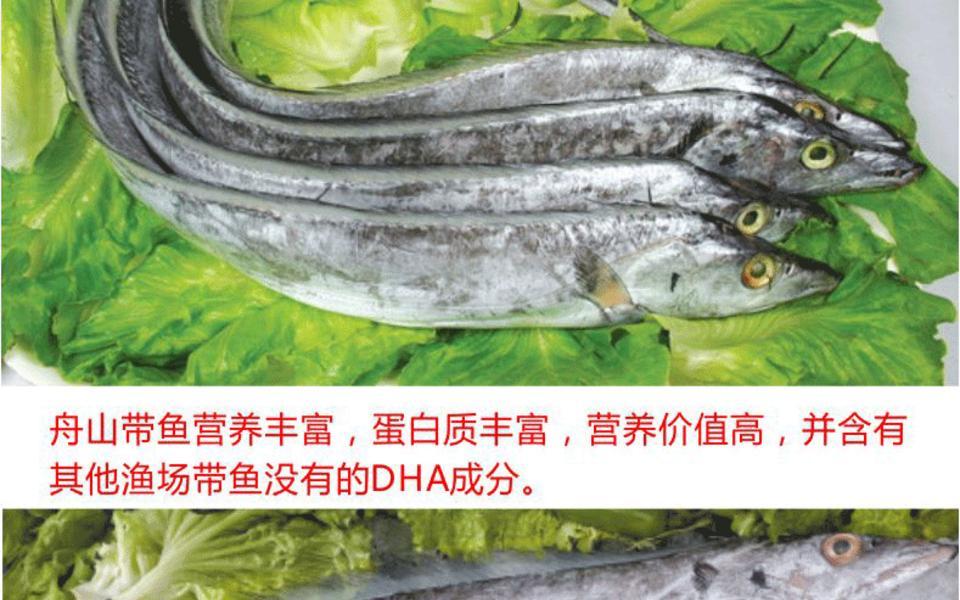 舟山小带鱼2_02.gif