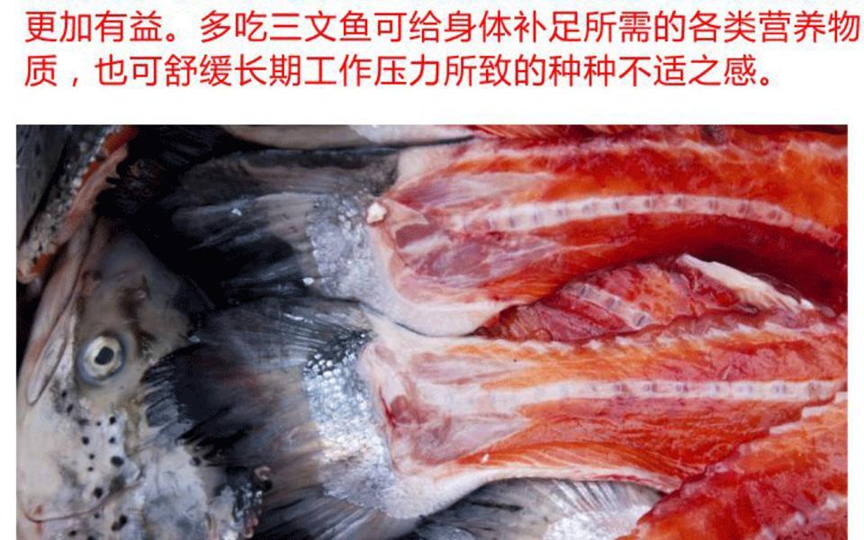 三文鱼骨头_04.gif
