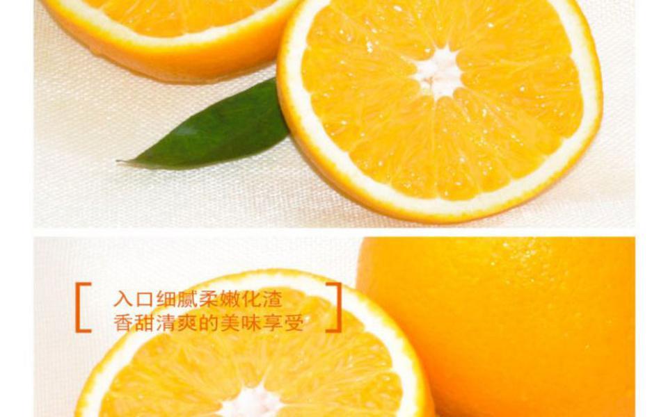 双喜橙_04.jpg