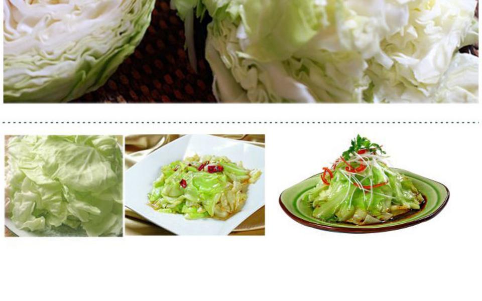 卷心菜_08.jpg